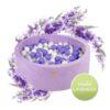 Pallimeri ümmargune Meow 90/40cm + 250 palli (lilla-valge-valge pärl mix)